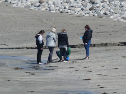 S2 IDL Skaill Beach May '19
